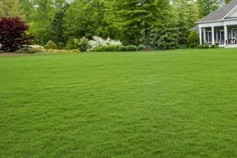 lawn cutting services hackettstown